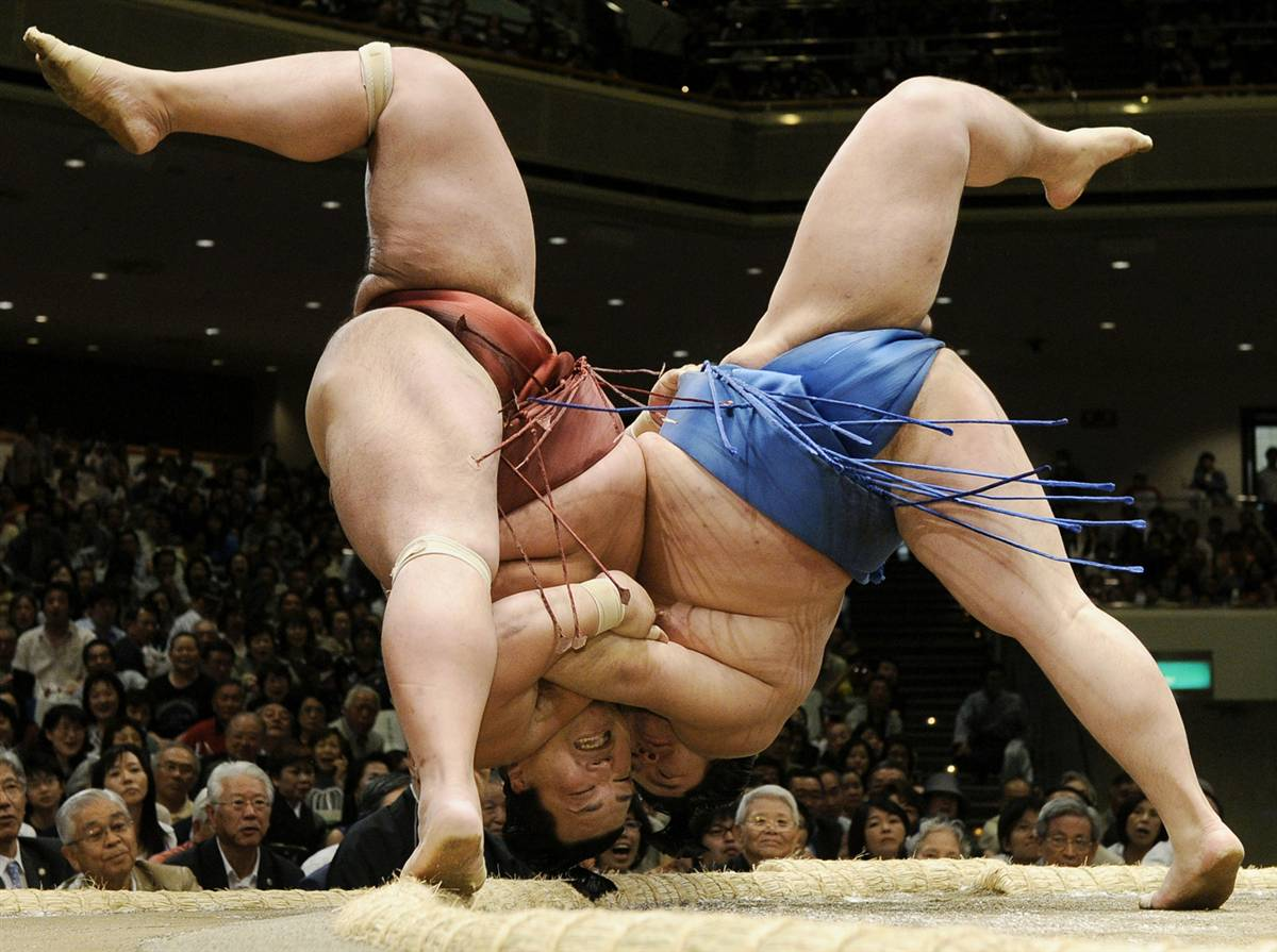 HA! Poetry in Motion, Sumo Style? 6